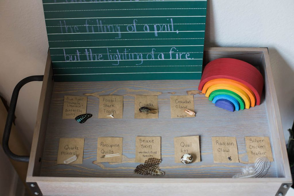 Back to homeschool: a simplified space. Nature center items and school quotes.
